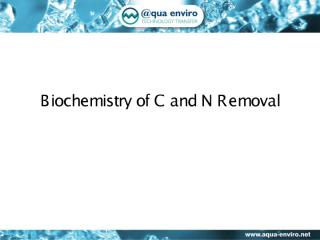 Lecture 11 - Biochemistry of carbon and nitrogen removal.pdf