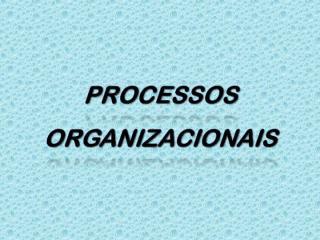 processos organizacionais.ppt