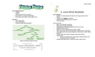 Cat Plantae.pdf