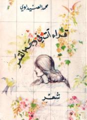محمد الصيداوي-قراءات في وجه القمر.pdf